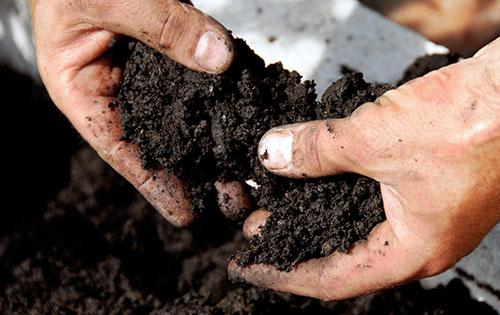 Um den Nährstoffkreislauf aufrecht zu erhalten, können auch in der Biolandwirtschaft ökologische Düngemittel sowie biologischer Pflanzenschutz sinnvoll eingesetzt werden.